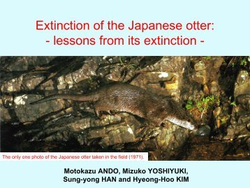 Extinction of the Japanese otter - Otter Specialist Group