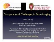 Computational Challenges in Brain Imaging - Waisman Laboratory ...