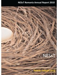 NESsT Activity Report 2010