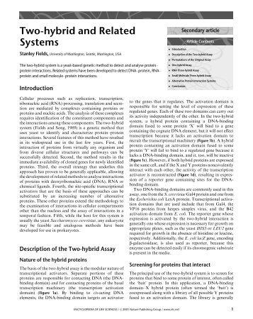 Yeast two hybrid.pdf - School of Life Sciences