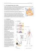 3. Zusammensetzung und Aufgaben des Blutes - Caucau.ch - Page 4