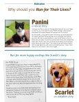 TEAM HANDBOOK - PAWS Chicago - Page 3
