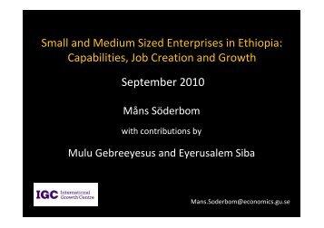 Small and Medium Sized Enterprises in Ethiopia: Capabilities ... - IGC