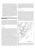 Shifting ecological baselines and the demise of Acropora cervicornis ... - Page 3