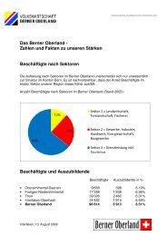 Beschäftigte nach Sektoren - im Berner Oberland