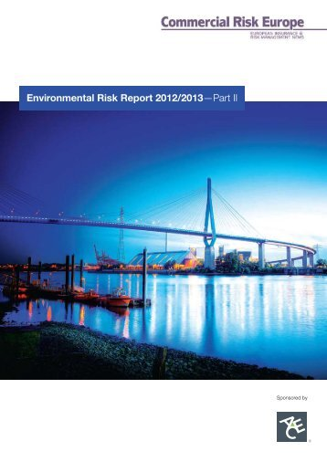 Environmental Risk Report 2012/2013 - ACE Group