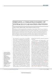 fibulins: a versatile family of extracellular matrix proteins