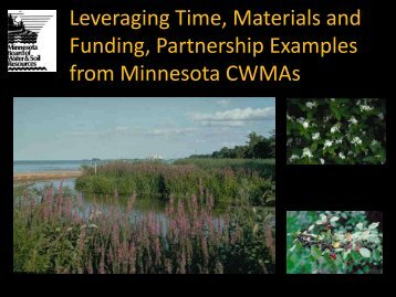 Cooperative Weed Management Areas - Midwest Invasive Plant ...