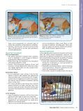 Physical Physical - Tripawds Downloads - Page 5