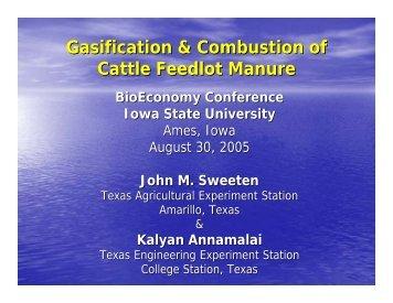 Presentation - Bioeconomy Conference 2009