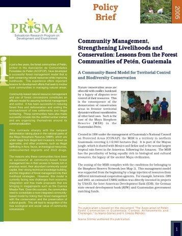Policy Brief - Prisma