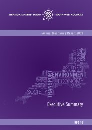 AMR 2009 Executive Summary - South West Regional Assembly