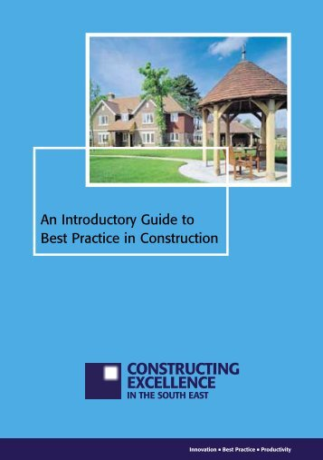 An Introductory Guide to Best Practice in ... - BiP Solutions Ltd.