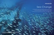 View PDF - Blue Ocean Institute