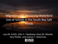 Migratory and Wintering Waterbird Use of Islands within the South ...