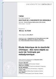 Etude théorique de la réactivité chimique: des  nano-objets au suivi ...
