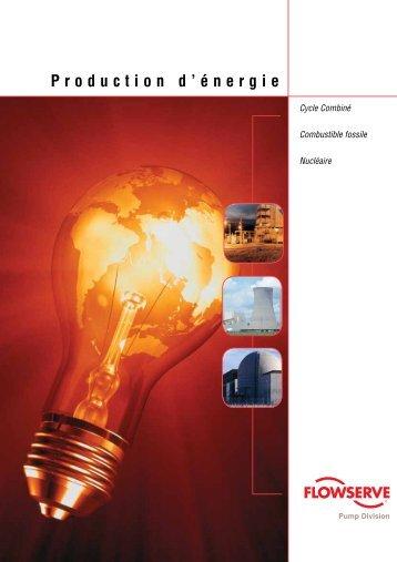 Production d'énergie - Flowserve  Corporation