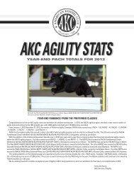 akc agility stats