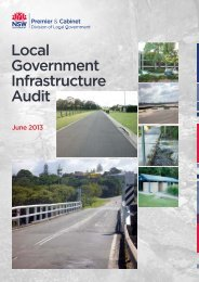 Local Government Infrastructure Audit - Division of Local ...