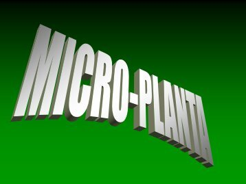 Micronutrientes na planta