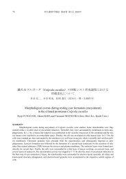 繊毛虫コルポーダ(Colpoda cucullus)の休眠シスト形成過程における ...