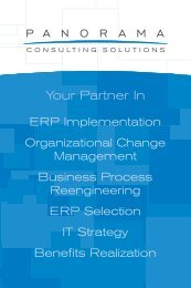 Panorama Brochure - Panorama Consulting Solutions