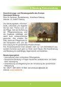 Gut älter werden in Babenhausen - Seite 7