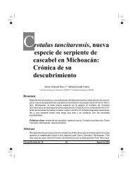 Crotalus tancitarensis, nueva especie de serpiente de cascabel en ...