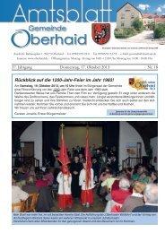 Amtsblatt Nr. 18/2013 vom 17.10.2013
