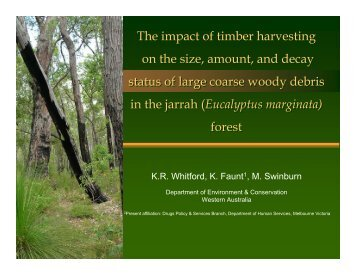 The impact of timber harvesting on the size, amount, and decay ...