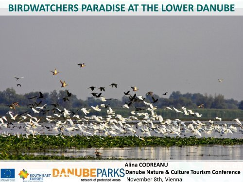 birdwatchers paradise at the lower danube - DANUBEPARKS