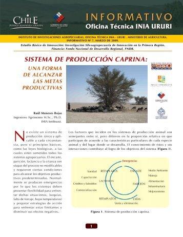 Sistema de producción caprina: Una forma de ... - Platina - INIA
