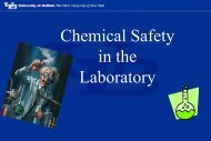 2013 Lab Safety Presentation - Chemical and Biological Engineering