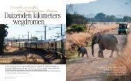 Eersteklas treinsafari van Kaapstad naar Pretoria - Rovos Rail
