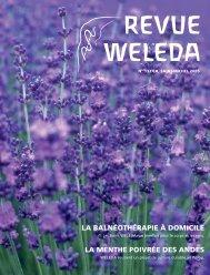 Revue Weleda 132 Saint-Michel 2005 PDF Download