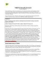 BKK-Tabata intervaller