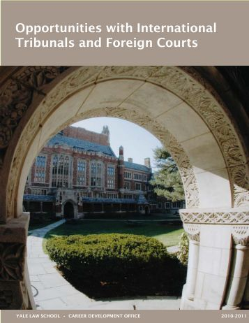 Opportunities with International Tribunals and Foreign Courts