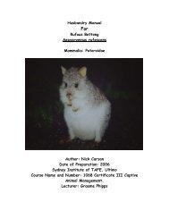 Husbandry Manual Rufous Bettong Aepyprymnus ... - Nswfmpa.org