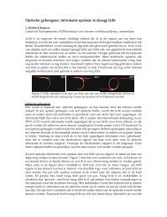Optische geheugens: informatie opslaan in (traag) licht
