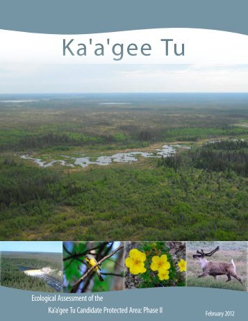 full text - NWT Protected Area Strategy