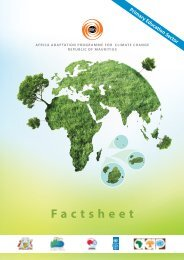 FACT SHEET PRIMARY.pdf - Africa Adaptation Programme