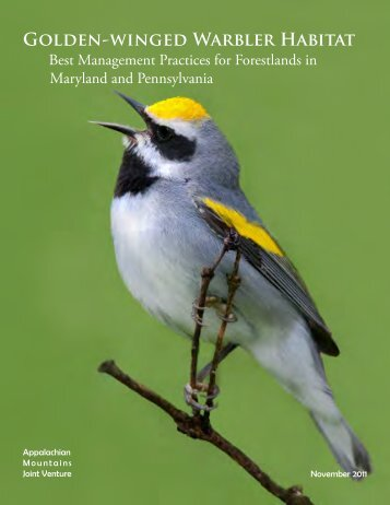 GOldEN-wiNGEd WARblER HAbitAt - American Bird Conservancy