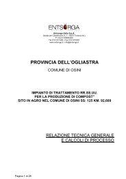 Relazione tecnica generale di processo - Provincia dell'Ogliastra