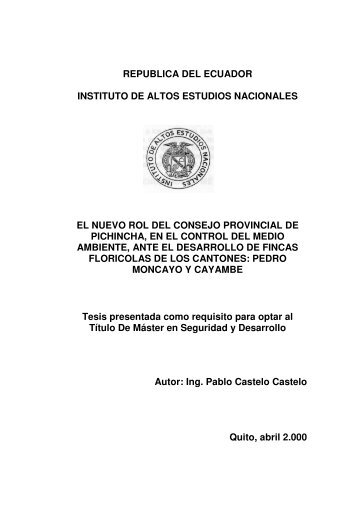 CASTELO PABLO 2000.pdf - Repositorio Digital IAEN - Instituto de ...
