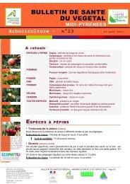 BULLETIN DE SANTE DU VEGETAL - DRAAF Midi-Pyrénées