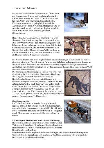 Hunde und Mensch - Allgemeinbildung-online.ch