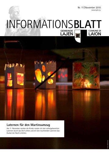 Informationsblatt 11/2010 (1,22 MB)