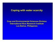 Coping with water scarcity - Rice Knowledge Bank - International ...