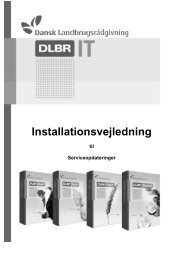 Installationsvejledning - DLBR IT