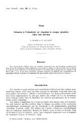 PDF file (239.2 KB)